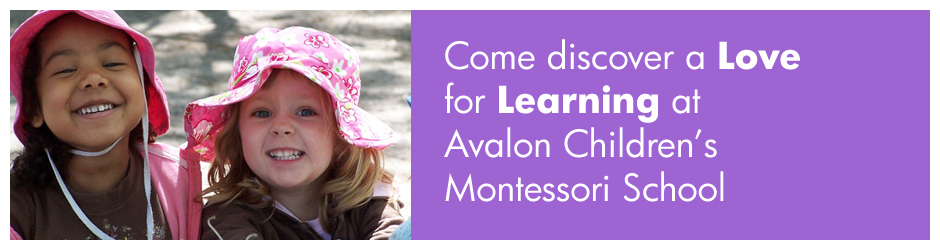 About Avalon Montessori
